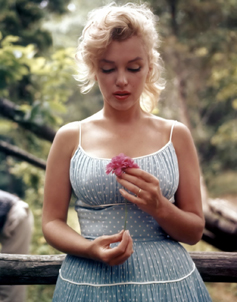 pin-up-marylin-monroe